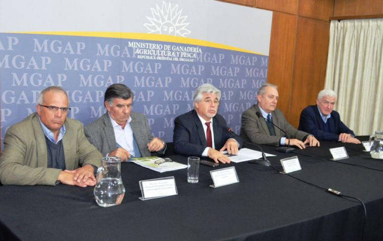 The panel which made the announcement long expected by Uruguayan officials and farmers