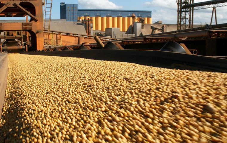 Projection is that Brazilian soybean production will decline from 113.93 million tons of soybeans in the 2016-2017 harvest to 107 million tons in the 2017-2018 harvest.