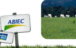 Abiec said Brazil shipped 145,822 tons of fresh and processed beef in the period, generating revenues of US$607 million, the highest amount for any month in 2017