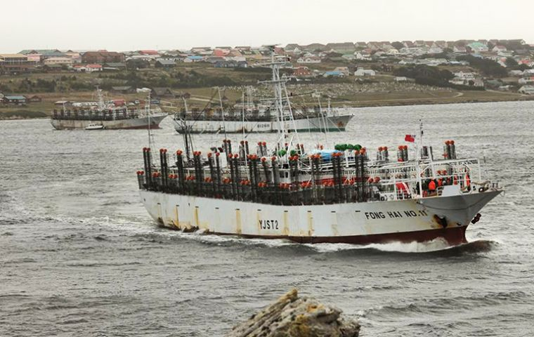 The report highlights the Falklands economy grew 26% between 2009/12, but wide fluctuations in GDP annually still exist due to the reliance on the fishing sector (pIC N. Bonner)
