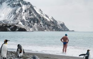Mr Pugh, who has swum in the Arctic and Antarctic and every ocean on Earth, had billed his latest swim as his most dangerous yet.