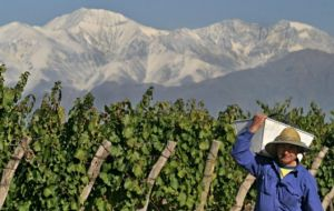 Argentine wine producers famed for its plush Malbec, had decried the proposal's potential impact on sales as they struggle to recover from small vintages