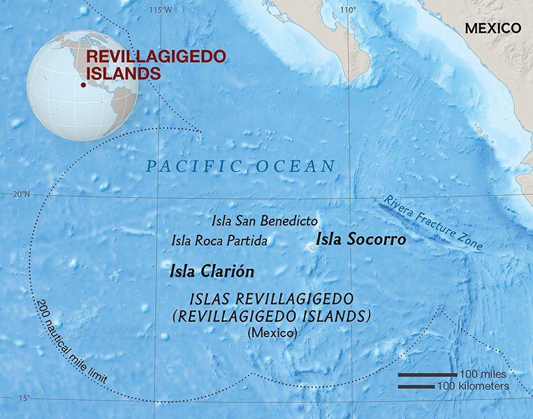 Mexico creates marine reserve around islands called 'Galapagos of North America'