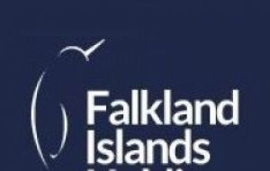 "FIH said revenue had remained ""broadly flat"" in its Falkland Islands Company division, coming in £200,000 higher at £8.58m"