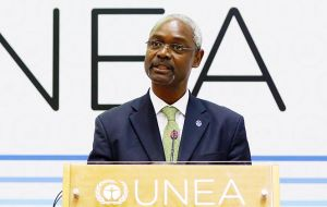 "UN Environment deputy head, Ibrahim Thiaw, said: ""What we need to do next is to move concretely to a plan of action""."