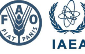 The International Atomic Energy Agency, IAEA and the Food and Agriculture Organization have supported Argentina in applying SIT against fruit flies