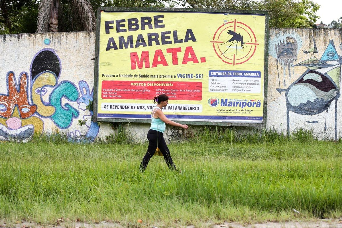 Brazil to Vaccinate 23.8 Million Against Yellow Fever
