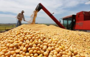 The position spurred a bitter, years-long dispute with agribusiness companies and Monsanto in 2016 decided not to launch its new varieties of soy seeds in Argentina.