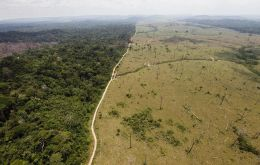 In the ruling judges said that Colombia, with a swathe of rainforest roughly the size of Germany and England, saw deforestation rates in its Amazon region skyrocket