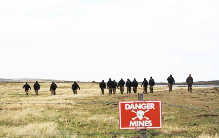 Teams working in the clearance of mine fields in the Falkland Islands