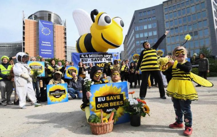 Campaigners dressed in black and yellow bee suits rallied outside the headquarters of the EC in Brussels ahead of the vote for a ban on three key pesticide chemicals.(Pic AFP)