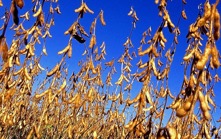 Soybean production is forecast to drop to 1.7 million tons in 2017-18, according to an April 30 GAIN report from the U.S. Department of Agriculture.