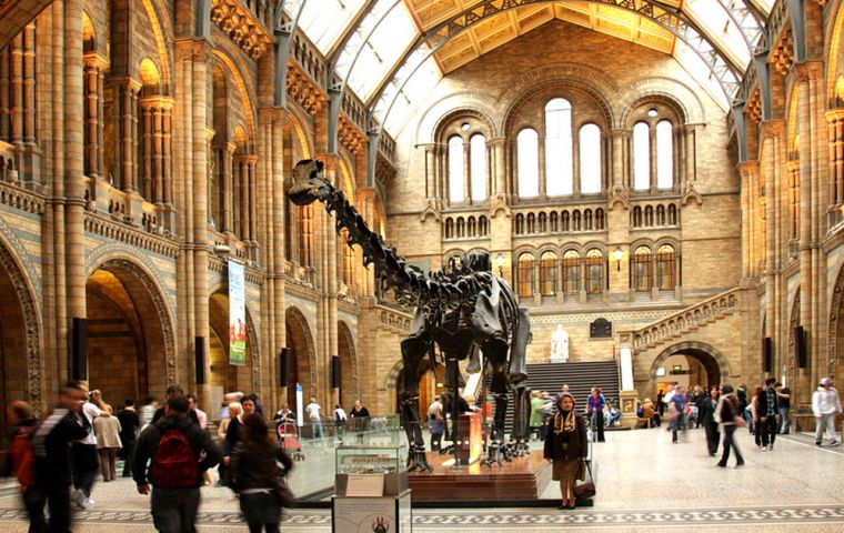 Students from Chichester College and Peter Symonds College went to the Natural History Museum