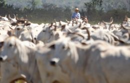 Brazil's access to many top-tier markets had remained limited by concerns over the introduction of the contagious FMD disease in cloven-hoofed ruminants.