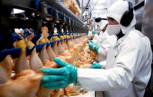 Brazil is the world's top chicken exporter, accounting for over a third of global exports, and is a major supplier to Asia and the Middle East