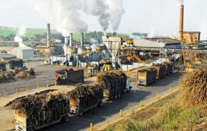 Around 150 sugar mills have already shut down in the state of Sao Paulo alone, trade group UNICA said in a statement.