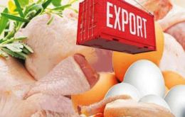 Chicken and pork losses are estimated in US$ 798 million. Brazil is the world's biggest chicken exporter. It shipped 4.3 million tons of chicken meat in 2017
