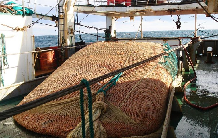 According to the release of official records, until 21 June, 68,081 tons of shrimp had been unloaded, compared to 87,400 in the same period last year