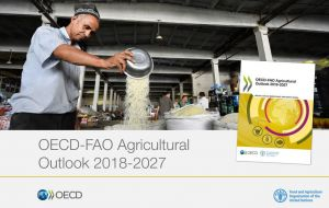 The report is from the Organization for Economic Co-operation and Development (OECD) and the Food and Agriculture Organization of the United Nations (FAO).