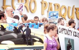 SeaWorld and Loro Parque both passed minimum animal welfare guidelines set by the Association of British Travel Agents (ABTA)