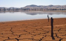 New South Wales with its fifth-driest July on record, has been hardest hit and about 99% of the state in officially in drought