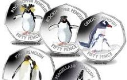 Coins features a headshot of a Macaroni penguin in color, highlighting the most distinctive feature of the breed: the golden crests at the centre of the forehead