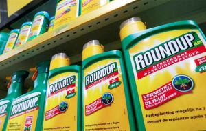 Monsanto has denied a link between the active ingredient in Roundup -- glyphosate -- and cancer, saying hundreds of studies have established that glyphosate is safe.
