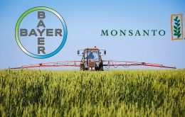 Bayer owns Monsanto, which was ordered by a California judge to pay US$ 289m damages to a man who said ingredients used in a weed killer had caused his cancer