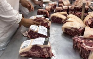 The volume between 400,000 and 470,000 tons is well above the 200,000 tons sold last year. China in seven months purchased 96.000 tons of Argentine beef