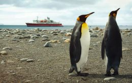 Lifetime experiences in the Falkland Islands!