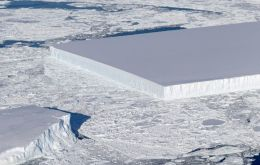 The picture was taken last week by scientists on a Nasa research plane. Such objects are not unknown, however, and even have a name - tabular icebergs