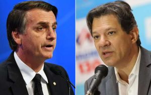 Bolsonaro and Haddad emerged from the October 7 election first round as the two clear leaders of a classic left versus right political battle