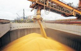 Worldwide output of coarse grains is forecast at 1 360 million tons, a 2.2 percent drop from 2017