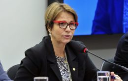 Tereza Cristina complained that the import of milk and rice was ruining small farms in Brazil
