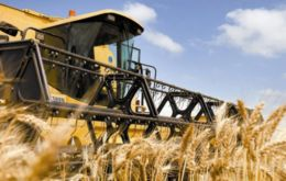 Lower wheat production will reduce Australia's wheat export capacity, supporting global benchmark prices that rose to their highest in more than two months