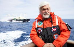 "Marine conservationists Sea Shepherd ""delighted to see the end of whaling in the Southern Ocean Whale Sanctuary"", said captain Paul Watson in a statement."