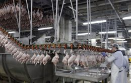Europe banned 20 Brazilian chicken plants because of food safety concerns, while Russia froze imports of the country's pork for nearly a year