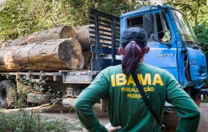 Bolsonaro has routinely attacked Ibama, which is tasked with policing the Amazon rainforest to stop deforestation and illegal mining.