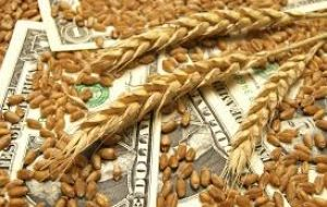 Also delayed are a quarterly report on US grain stocks, a final US crop production report for 2018 and USDA's report on winter wheat seedings for harvest in 2019