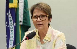 Tereza Cristina Dias said that Brazil's new business-friendly government plans to send draft legislation on self-monitoring to Congress in the first half of this year