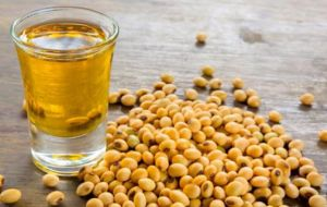 Argentina exports to India mostly soy oil and other goods from the food sector
