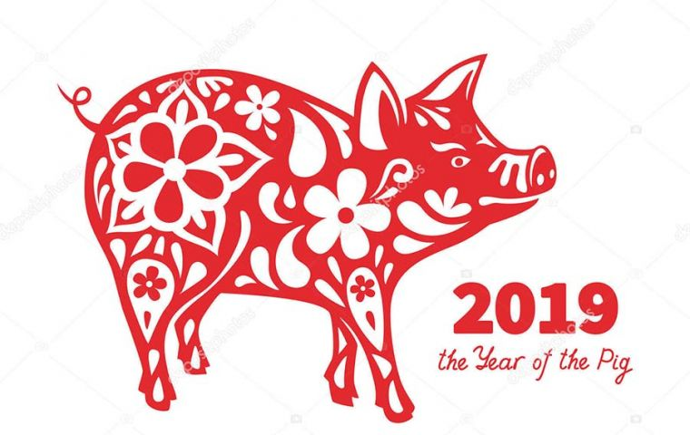 The Chinese zodiac gives each year an animal sign and 2019 is the Year of the Pig. For Chinese people, years begin at Chinese New Year, rather than January 1!