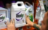Pharmaceutical group Bayer had strongly rejected claims that its glyphosate-based Roundup product was carcinogenic