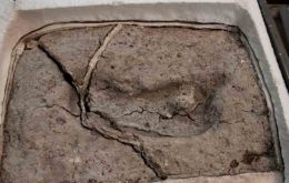 The footprint was first discovered in 2010 by a student at the Universidad Austral of Chile