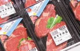 The shipment is a first step for the entry of Argentine beef from all over the country to Japan
