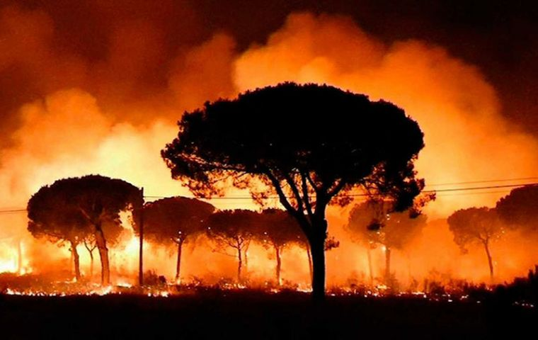 The report, released by WWF Spain, said the fires cost the continent an estimated €3 billion (US$3.4 billion) An average of 300,000 hectares of forest burn every year in Europe, European data show.
