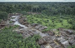 The remarks come a day after Brazil's National Institute for Space Research, Inpe, published preliminary satellite data showing deforestation in Brazil's Amazon