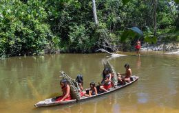 Rich in gold, manganese, iron and copper, the Waiapi's territory is deep inside the Amazon, which has faced growing pressure from miners, ranchers and loggers