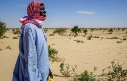 Desertification threatens the village of Tantaverom. Mbo Malloumu has taken the initiative to plant acacia seedlings to rehabilitate the land.(Pic UNDP/Chad)