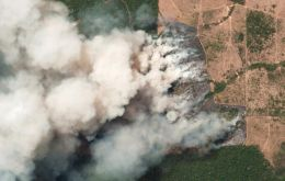 The latest official figures show 76,720 forest fires were recorded in Brazil so far this year, the highest number for any year since 2013